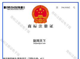 陇南陇网天下注册商标证书