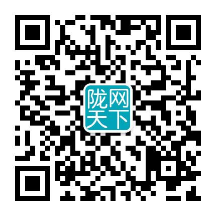 陇网天下电子商务有限公司专注企业互联网服务网站建设、网络优化推广